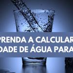 Como calcular a quantidade de água para tomar?