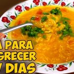 5 receitas de sopa para emagrecer